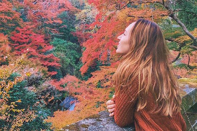 YOLO JAPAN会員おすすめの紅葉スポットの写真