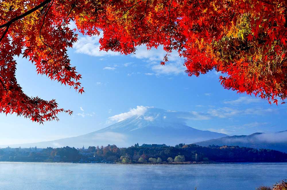 河口湖の紅葉風景